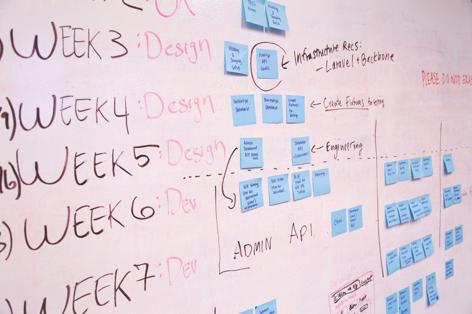 Task Management Guide for Team Success